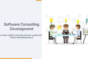 Software Consulting Services